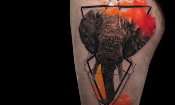 Ligera-ink-tattoo-milano-tatuaggi-milano-migliori-tatuatori-milano-tatuaggi-watercolor-milano-tatuatore-watercolor-milano-tatuaggi-acquerello-tatuaggio-elefante-watercolor