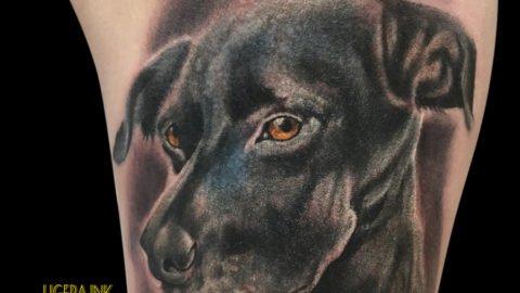 Ligera-ink-tattoo-milano-tatuaggi-milano-miglior-tatuatore-milano-migliori-tatuatori-milano-tatuaggi-realistici-milano-tatuaggi-realistici-animali