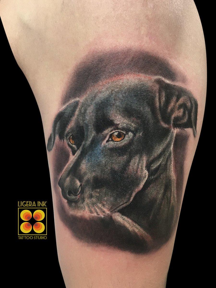 Ligera-ink-tattoo-milano-tatuaggi-milano-miglior-tatuatore-milano-migliori-tatuatori-milano-tatuaggi-realistici-milano-tatuaggi-realistici-animali-tatuaggio-cane