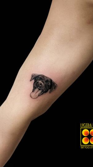 Ligera-Ink-Tattoo-Milano-Tatuaggi-milano-tatuatori-milano-tatuaggio-blackwork-milano-tattoo-blackwork-milano-tatuaggio-microritratti-cane